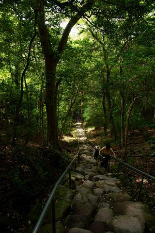 熊野磨崖仏石段②.jpg